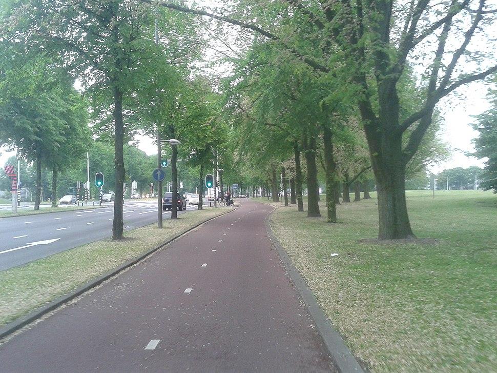 Rotterdam - 2013 - panoramio (83)