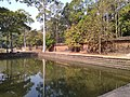 Royal Palace East Pond 3.jpg