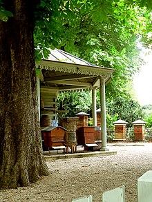 Diskussion - Jardin du luxembourg enfant ...