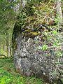 Ruine Baltenstein GO-3.jpg