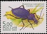 Russia stamp 2003 № 872.jpg