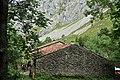 Ruta La C del Tejo-Bulnes - 045 (50278586143).jpg