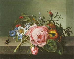Spray of flowers, with a beetle on a stone balustrade