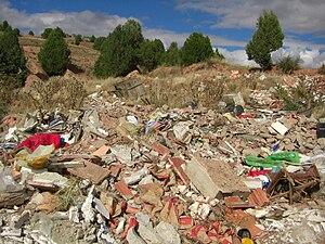 Sierra de Cucalón - Image: Sabinar Olalla 2