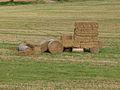 Sainpuits-FR-89-fête 2014 de l'agriculture-02.jpg