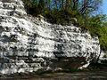 Saint-Astier (Dordogne) falaise calcaire (1).jpg