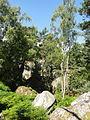 Saint-Pierre-lès-Nemours (77), le Mont Sarrasin par le GR 13, sens est-ouest 27.JPG