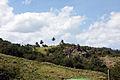 Saint Andrew, Barbados 063.jpg