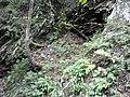 Sajicho Owai, Tottori, Tottori Prefecture 689-1324, Japan - panoramio (2).jpg