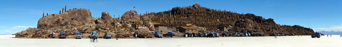 Isla de Incahuasi al centro del Salar