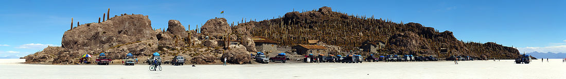 Isla Incahuasi al centro del Salar