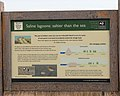 Saline lagoons explained - geograph.org.uk - 1181019.jpg