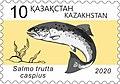 Salmo Trutta Caspius 2020 Stamp of Kazakhstan.jpg