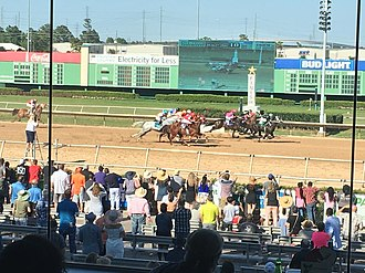 Sam Houston Race Park - Horses crossing the finish line at Sam Houston.