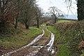 Sampford Peverell, Whitnage Lane - geograph.org.uk - 148287.jpg