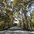 Sangelaj, Tehran, Tehran Province, Iran - panoramio (3).jpg