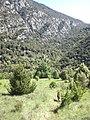 Santa Maria d'Escales des de lluny (maig 2011) - panoramio.jpg