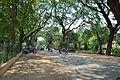 Santiniketan-Bolpur Road - Birbhum 2014-06-28 5185.JPG