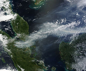 2013 Southeast Asian haze - A NASA satellite image of the haze on 19 June 2013.