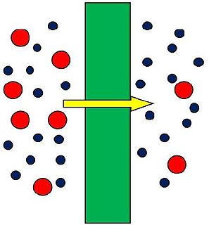 Membrane thin, film-like structure that separates two fluids, acting either as a selective barrier or a separating structure