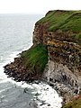 Sea Cliffs along the Cleveland Way to Filey - geograph.org.uk - 468957.jpg