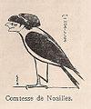 Sem Noailles 1911.jpg