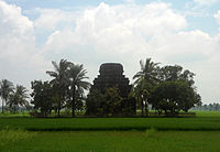 బిక్కవోలు వద్ద పొలాలలో ఉన్న పురాతన శివాలయం
