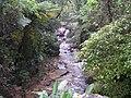 Serra do Japi 2.JPG