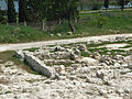 Sevastopol Strabon's Khersones antique greek settlement-27.jpg