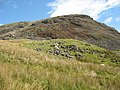 Sheep grazing just below Bwlch y Manod - geograph.org.uk - 560979.jpg
