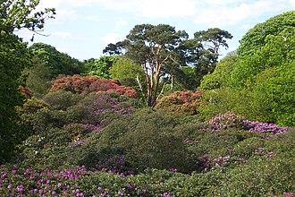 Sheringham Park - Image: Sheringham Park 2