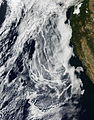 Ship tracks off the western United States - November 1, 2013.jpg