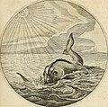 Silenus Alcibiadis, sive, Proteus - vitae humanae ideam, emblemate trifariàm variato, oculis subijciens (1618) (14561518879).jpg