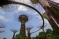 Singapore, Gardens by the bay - panoramio (5).jpg
