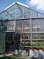 Skleník v botanické zahradě.jpg