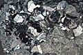 Skutterudite Bou Azzer-El Graara Ophiolite; Tamdrost Mine, Maroc.jpg