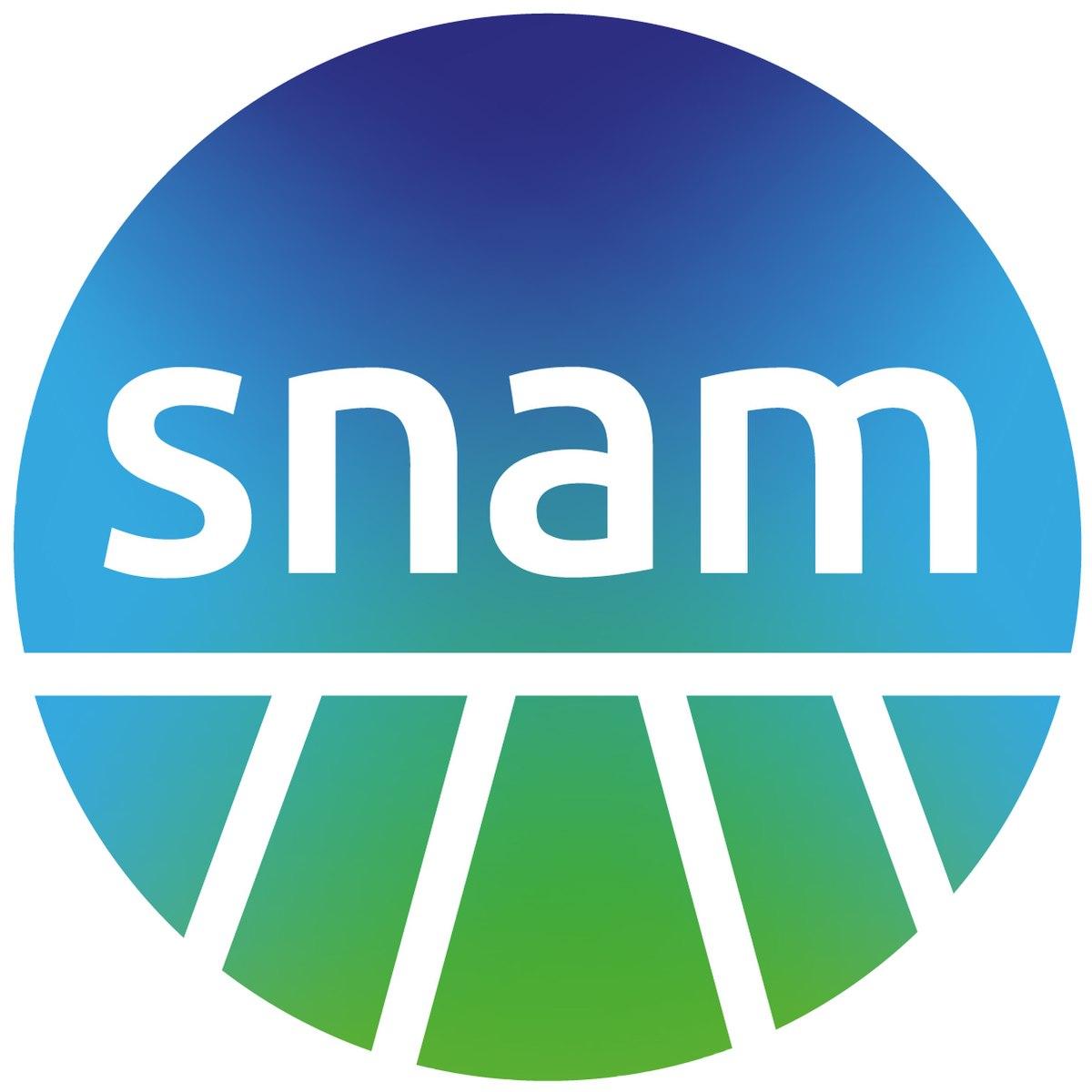 Výsledek obrázku pro Snam group