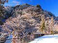 Snow - panoramio (43).jpg