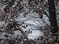 Snowfall in Segonzano 06.jpg