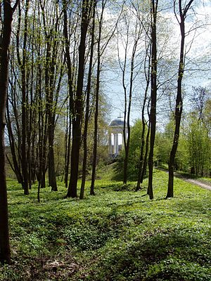 Sokyryntsi Park-1.jpg