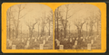 Soldiers' cemetery, Arlington, by Kilburn Brothers 8.png