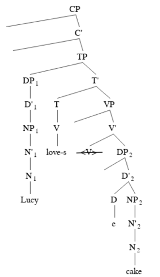 """Specifier (linguistics) - """"Lucy loves cake"""""""