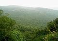 Sri Venkateswara National Park Tirumala Hills 06.JPG