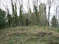 St Pancras Church - geograph.org.uk - 740067.jpg
