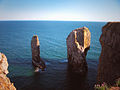 Stack Rocks - Pembrokeshire - 20 June 2004.jpg