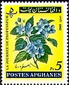 Stamp of Afghanistan - 1962 - Colnect 485336 - Blossom.jpeg