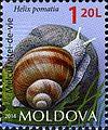 Stamps of Moldova, 2014-26.jpg