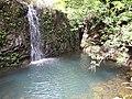 Starr-090702-2028-Psidium guajava-habit and waterfall-Puaa Kaa Park Hana Hwy-Maui (24672842990).jpg