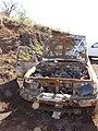 Starr-110105-9977-Ageratina adenophora-habitat and burnt Toyota vehicle-Polipoli-Maui (24704195239).jpg
