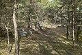 Stenkumla gravfält 4-1 - KMB - 16001000006856.jpg